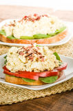 Egg salad sandwhich on a white plate Stock Photography