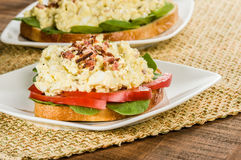 Egg salad sandwhich on a white plate Royalty Free Stock Photo