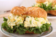Egg Salad Sandwich Closeup Stock Photography