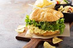 Egg salad sandwich on croissant Stock Photos