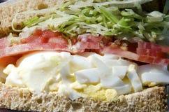 Egg Salad Sandwich Stock Photos