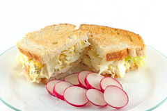 Egg Salad Sandwich Royalty Free Stock Photography