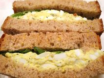 Egg Salad and Whole Wheat royalty free stock image