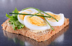 Egg sandwich Royalty Free Stock Photos