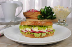 Egg sandwich with radish Stock Images