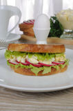 Egg sandwich with radish Royalty Free Stock Photo