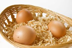 Egg in sawdust with basket over white Royalty Free Stock Photos