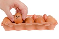 Egg scare Stock Images