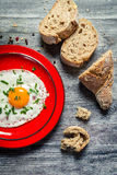 Egg served with parsley and bread Royalty Free Stock Photo