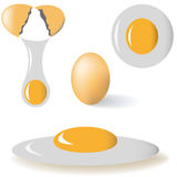 Egg. Set of egg vector isolated on white background Stock Photography