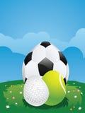 Egg Shaped Sport Balls Royalty Free Stock Photo