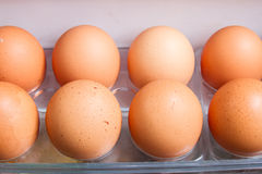 Egg on the shelf Stock Photography