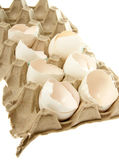 Egg shell Stock Photo