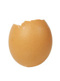 Egg shell Stock Photos