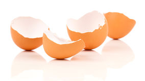 Egg shell crack Stock Image
