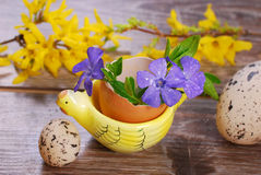 Egg shell with flowers in hen shape stand for easter Royalty Free Stock Images