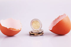 Egg Shell and Money Stock Photography