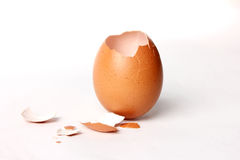 Egg shell opening. Stock Photos