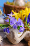 Egg shell with spring flowers for easter royalty free stock images