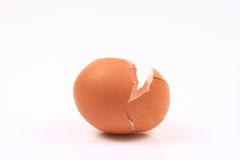 Egg shell Royalty Free Stock Image