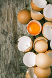 Egg shell and yolk Royalty Free Stock Image