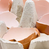 Egg Shells Royalty Free Stock Image