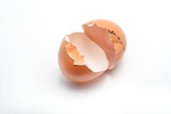 Egg shells. Cracked egg shells on white background royalty free stock images