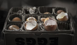 Egg shells Stock Images