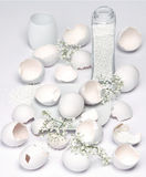 Egg shells and pebbles Stock Images