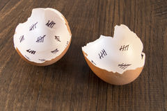 Egg shells Royalty Free Stock Images