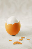 Egg skin. Egg white with broken shell Stock Photos