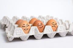 Egg sleep on eggs panel Stock Photos