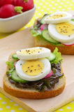 Egg slices on whole wheat bread Royalty Free Stock Image