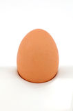 Egg soft boiled on white Stock Photography