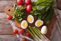Egg, sorrel, radishes and tomatoes. horizontal top view Royalty Free Stock Photo
