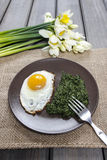 Egg with spinach  for healthy breakfast. Royalty Free Stock Image