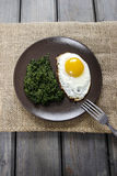 Egg with spinach  for healthy breakfast. Royalty Free Stock Photography