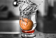Egg splash Stock Image