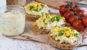 Egg spread on round fresh homemade bread, decorated with spring onion and crushed yolk Royalty Free Stock Photo