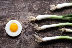 Egg and spring onions Royalty Free Stock Image