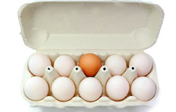 Egg standing out Royalty Free Stock Photos