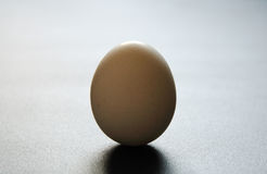 Egg stands Stock Image