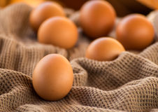 Egg Still Life on brown cloth Royalty Free Stock Photos