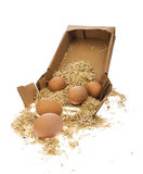Egg with straw Royalty Free Stock Image