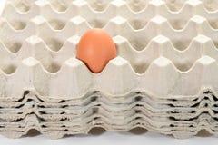 Egg su una pila di cassetti dell'uovo Immagini Stock Libere da Diritti