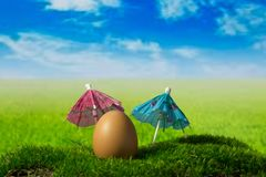 Egg and sunshades on the green fantasy meadow. Egg and sunshades on the moss on the green fantasy meadow Royalty Free Stock Image