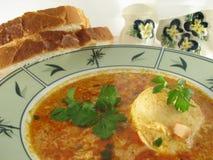 Egg Suppe lizenzfreie stockfotos