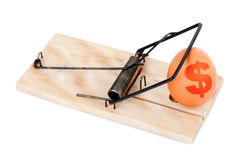 Egg with symbol of dollar in mousetrap Stock Images