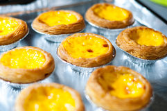 Egg tart Stock Images