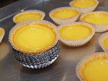 Egg Tarts. Is one of the many popular Cantonese Tim Sum Royalty Free Stock Images